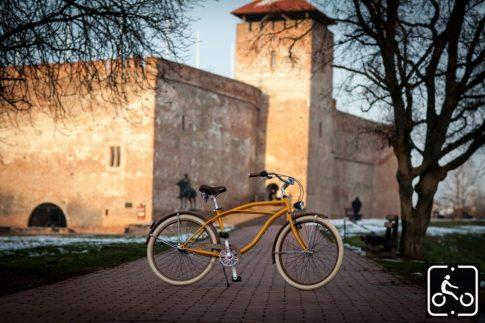 Egyedi Stray Cat Férfi Cruiser Kerékpár 1sp - Okker-Barna