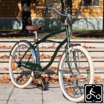 Egyedi Stray Cat Férfi Cruiser Kerékpár 1sp - Zöld-Króm
