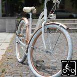 Egyedi Cruiser kerékpár *****